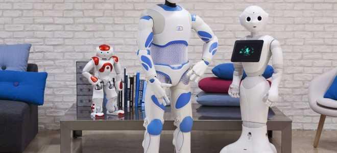 Виды роботов и автономных интеллектуальных систем, применяемых в современном мире