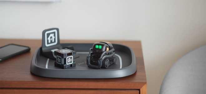 Робот Anki Vector: новые возможности электронного питомца и отличия от его предшественника