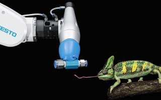 Бионические роботы от немецкого разработчика Festo: применение законов живой природы в робототехнике