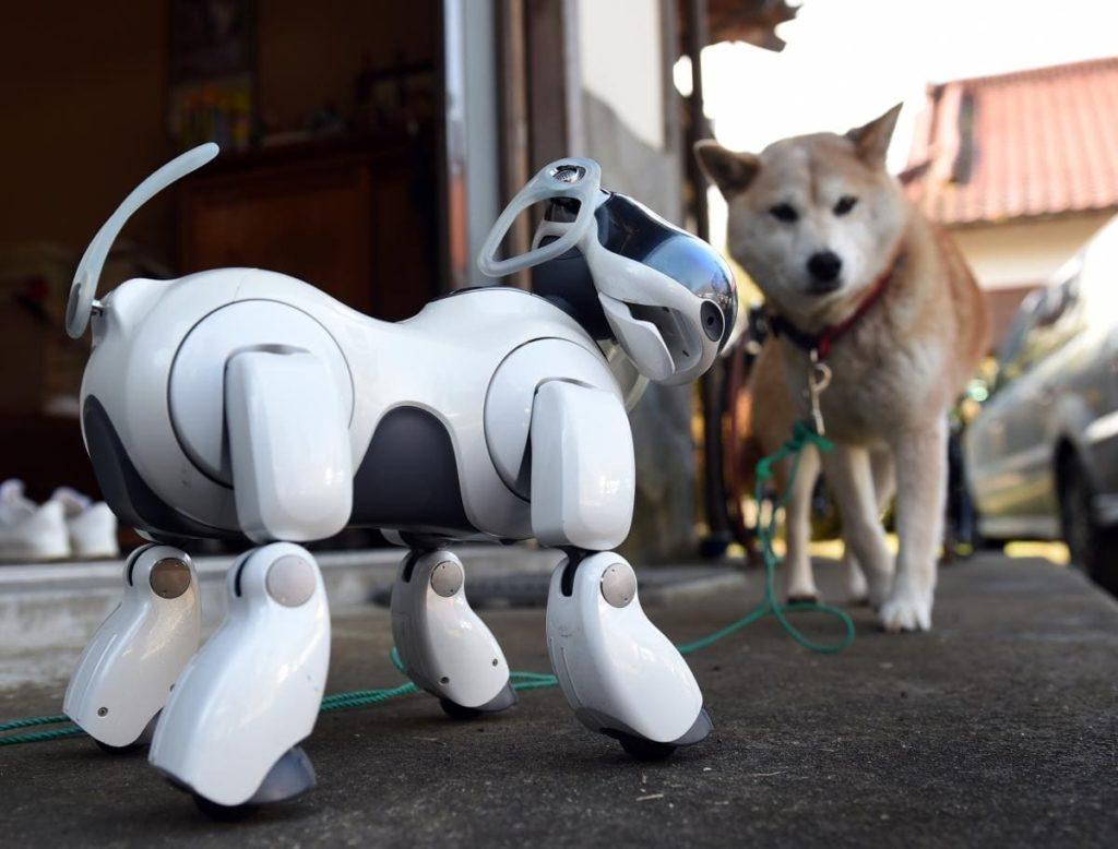 Роботы-домашние животные